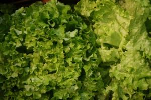 Des salades - A.Langlois
